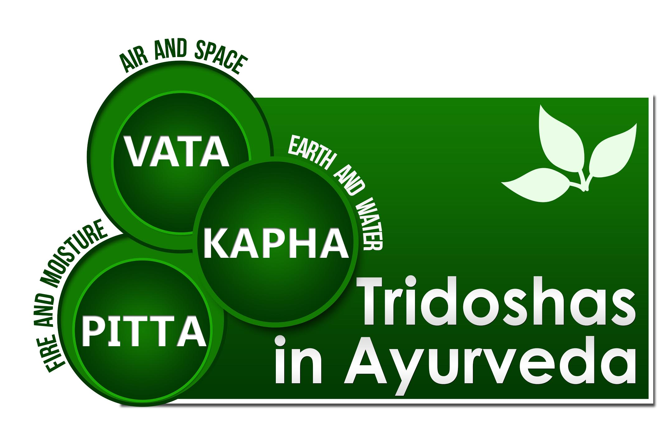 What Is Ayurveda picture